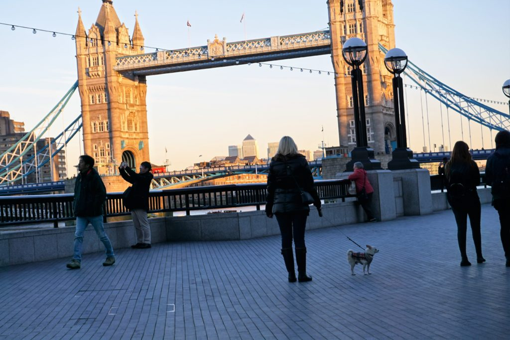 DSC03353-2-1024x683 A Dog Travels to the Tower Bridge in London