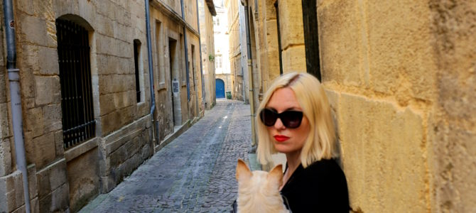 A Dog Travels to Bordeaux part 2