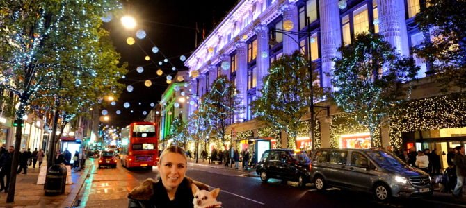A Dog Travels to Oxford Street Lights and Hyde Park Winter Wonderland