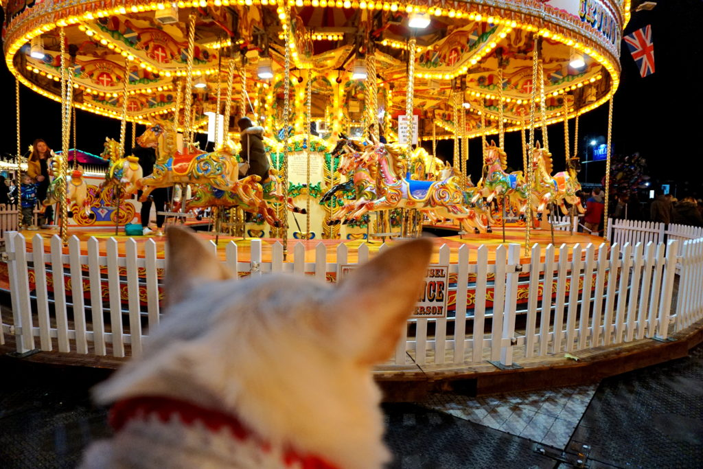 correctedDSC00583-1024x683 A Dog Travels to Oxford Street Lights and Hyde Park Winter Wonderland