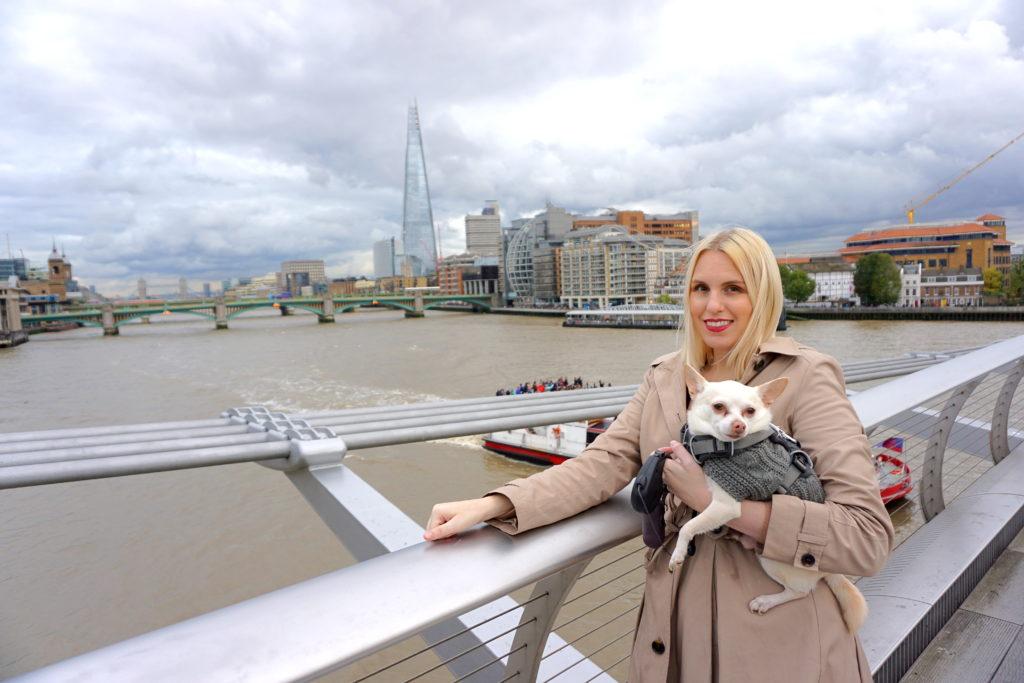 correctDSC00769-1024x683 A Walk Through London's Top Sites with a Dog