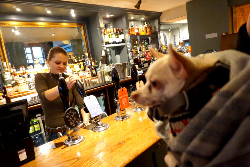 correctedDSC09994-1024x683 Bringing a Dog to Bars, Cafes, and Restaurants in England.