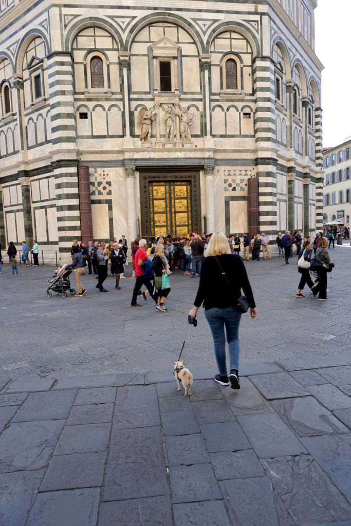 correctedIMG_6776-768x1024 A Dog Travels to Florence, Italy Part 1